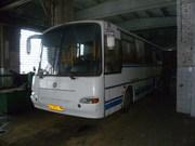 Автобус ПАЗ 423002 Аврора